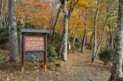 三峰神社_2012-11-10_03_.JPG