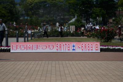 敷島 バラ園_140517_73.JPG