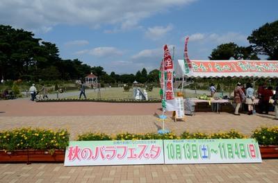 敷島バラ園 秋のバラ祭り_2012-10-13_16_.JPG